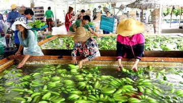 Kim ngạch xuất khẩu nông lâm thủy sản tăng 26%