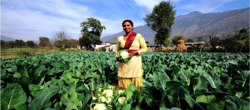 Một Tương Lai Hữu Cơ: Ấn Độ Có Trên 30% Các Nhà Sản Xuất Hữu Cơ Trên Thế Giới!