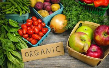Nông nghiệp hữu cơ – giải pháp cho nông nghiệp bền vững
